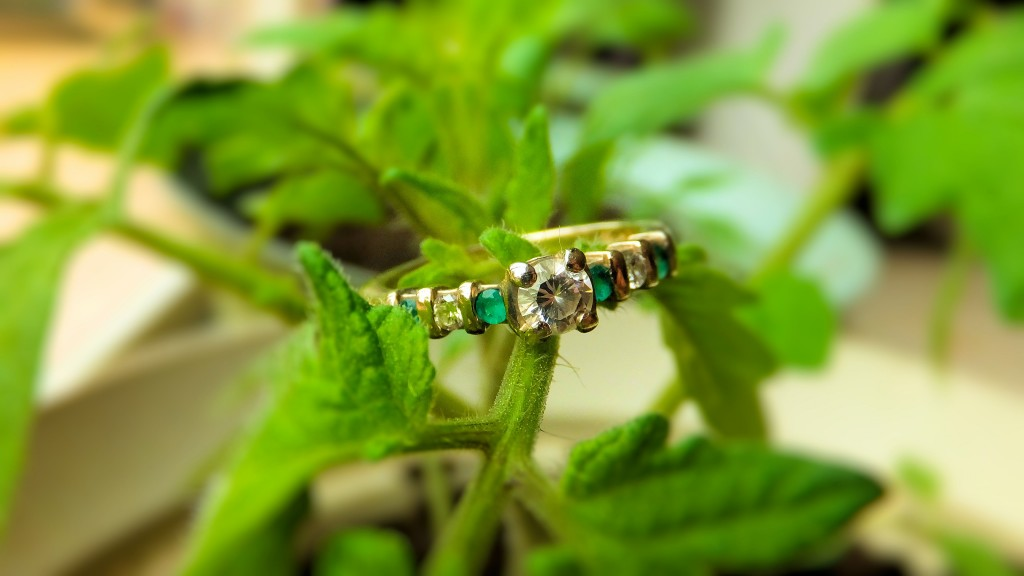 Emerald for May Goodman's Jewelers